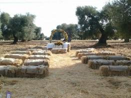matrimonio rurale